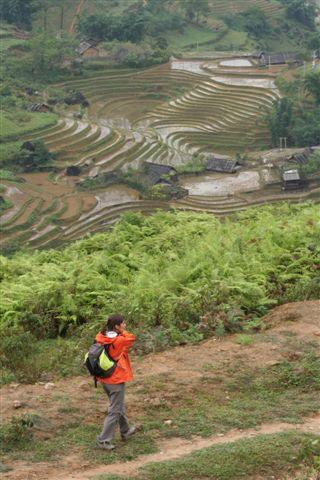 O trekking pelos campo de arroz